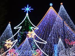 渋谷のイルミネーションでクリスマスデート
