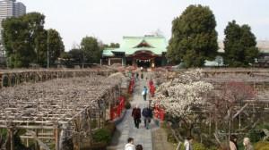 亀戸天神社で初詣