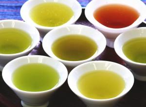 花粉症に効果の高いお茶